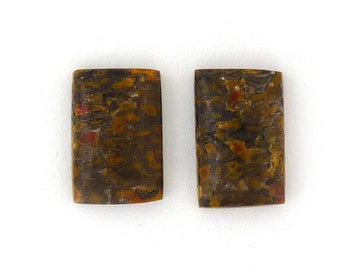Dinosaur Bone Designer Cabochon Gemstone 8.5x13.2x3.4 mm Free Shipping Free Returns