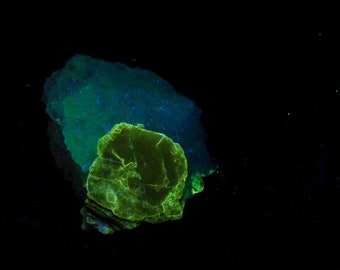 Fluorescent Polylithionite & Mica Mineral Specimen from Tajikistan Free Shipping Free Returns