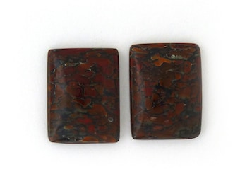 Dinosaur Bone Designer Cabochon Gemstone 14.0x18.4x3.9 mm Free Shipping Free Returns