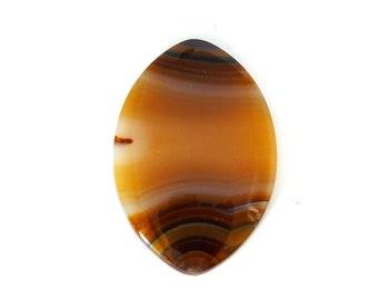 Banded Piranha Agate Designer Cabochon Gemstone Piranha Agate 22.9x33.2x3.8 mm Free Shipping Free Returns