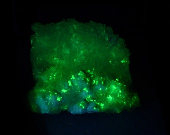 Fluorescent Zippeite Mineral Specimen from New Mexico Free Shipping Free Returns