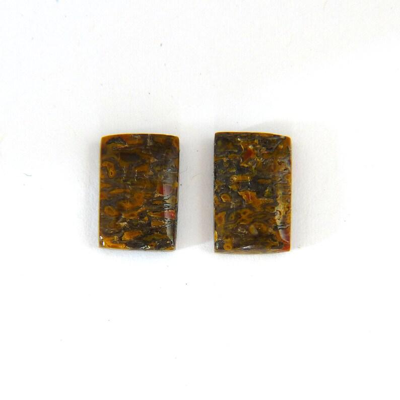 Dinosaur Bone Designer Cabochon Gemstone Matched Pair Free image 0