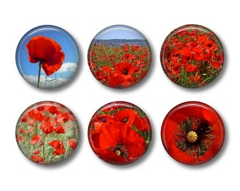 Flanders Field Poppies fridge magnets, fridge magnet set