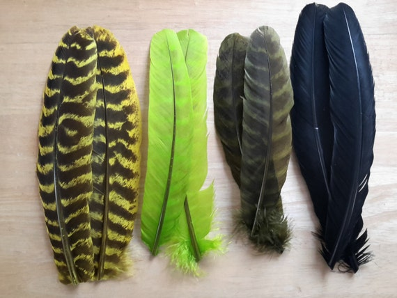 Cock Pheasant Short Green Back Fly Tying Feathers Fly Tying Fast Delivery