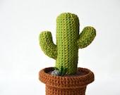 Desert Cactus Crochet Pattern, Mexican Cactus Crochet Pattern, Plant in Pot Crochet Pattern, Plant Crochet Pattern, DIY Crochet Cactus
