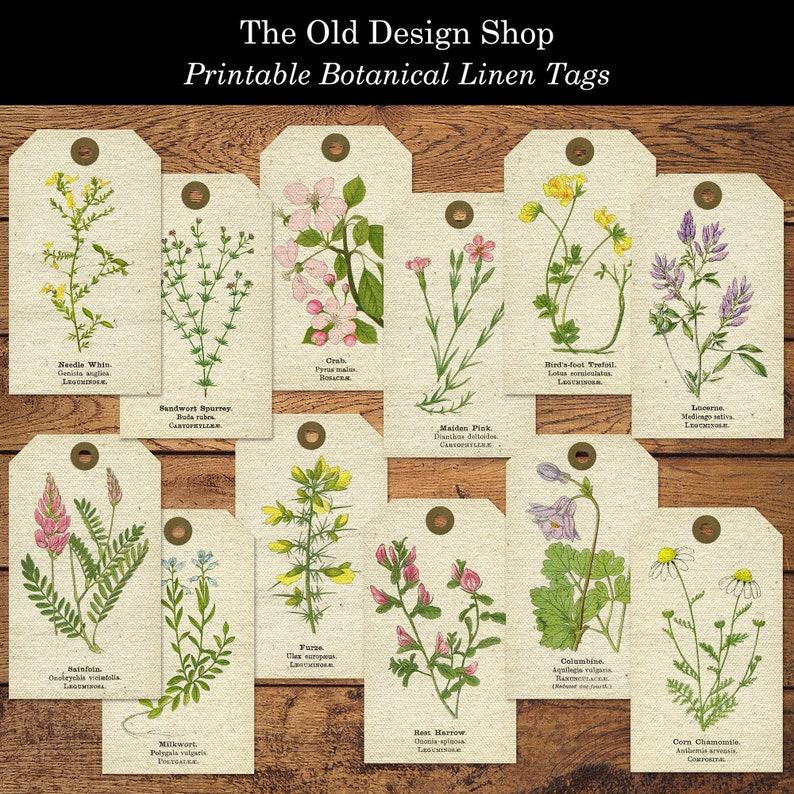 Botanical Linen Tags Two Printable Digital Collage Sheets JPG image 0