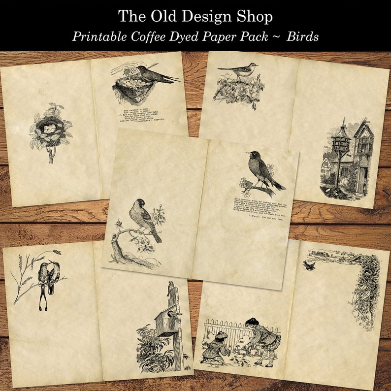 Printable Vintage Bird Themed Coffee Dyed PLUS Black and White image 0