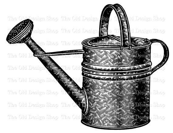 Vintage Watering Garden Pail Clip Art Illustration Digital | Etsy