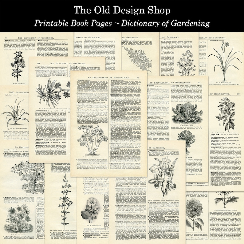 Dictionary of Gardening Printable Vintage Book Pages for image 0