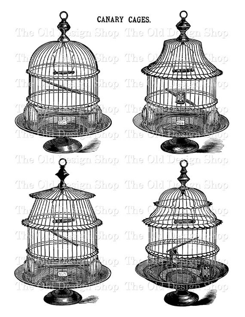 Vintage Birdcage Set 1 Printable Bird Cage Illustration Digital Stamp  Transfer Image