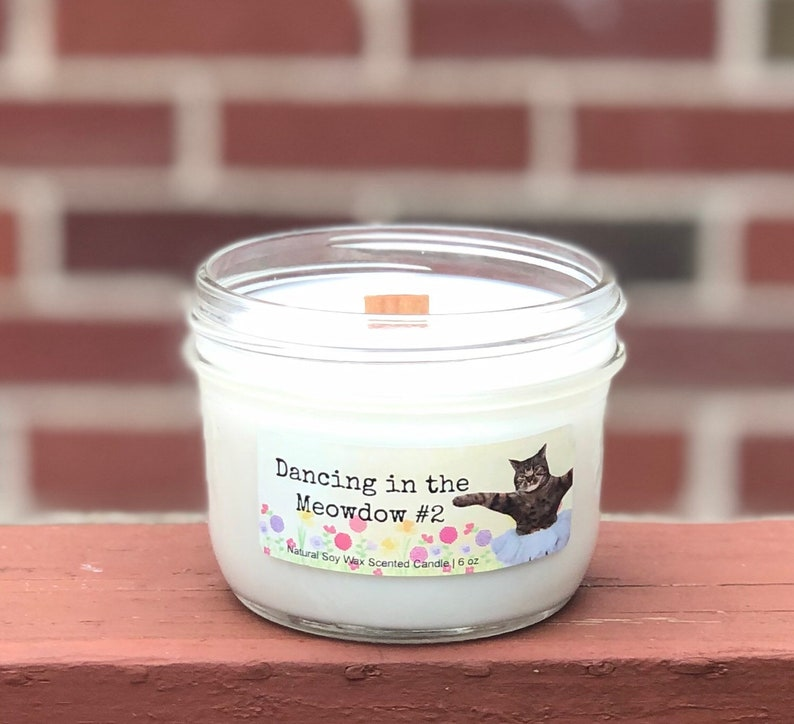 Dancing in the Meowdow 2 Natural Soy Wax Scented Cat Candle image 0