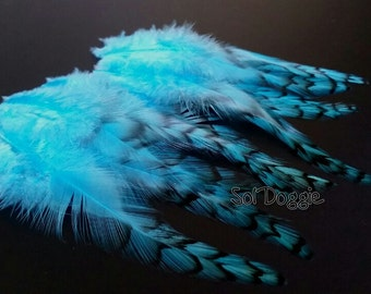 Beautiful Assorted Colour Feathers Crafts Card Making Mixed Sizes 200