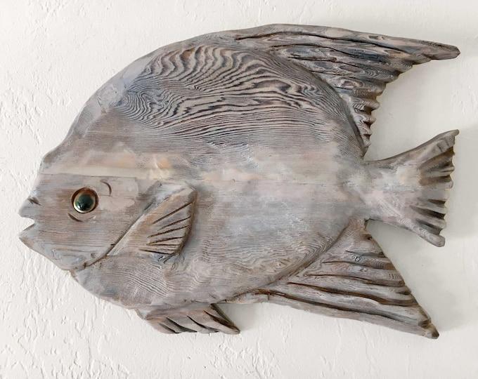 "Driftwood Queen Angelfish 21x14"" Fish 2d Beach Décor sculpture by SEASTYLE"