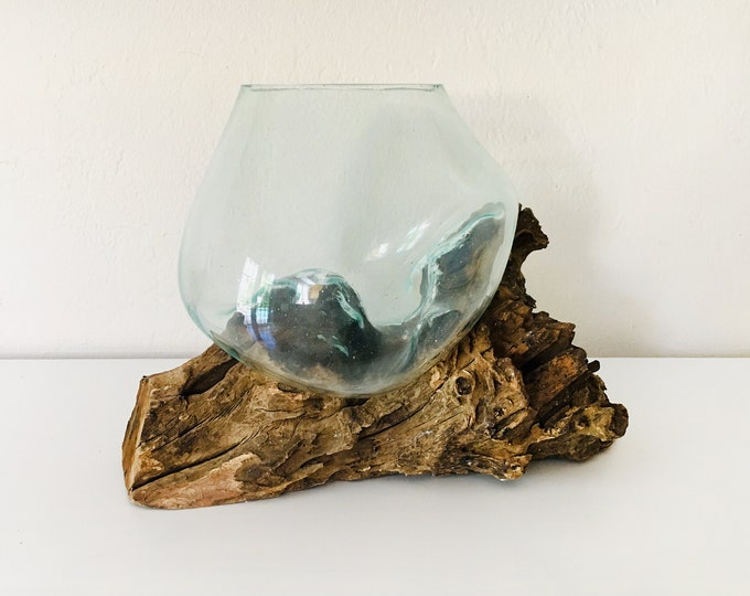 Driftwood and Clear Glass Bowl Molten Beach Decor by SEASTYLE