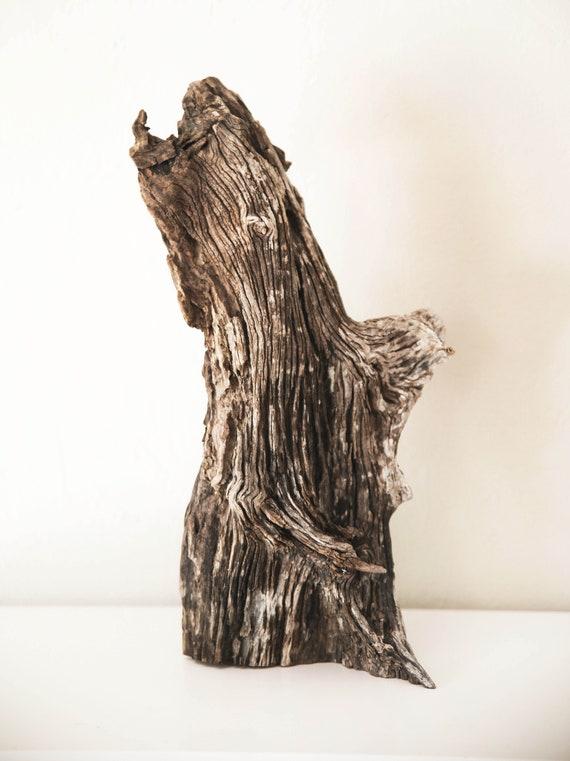 Driftwood Sculpture Branch Beach Decor by SEASTYLE