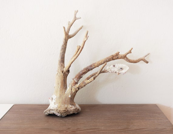 Driftwood Branch Corals Jewelry Handstand Beach Decor by SEASTYLE