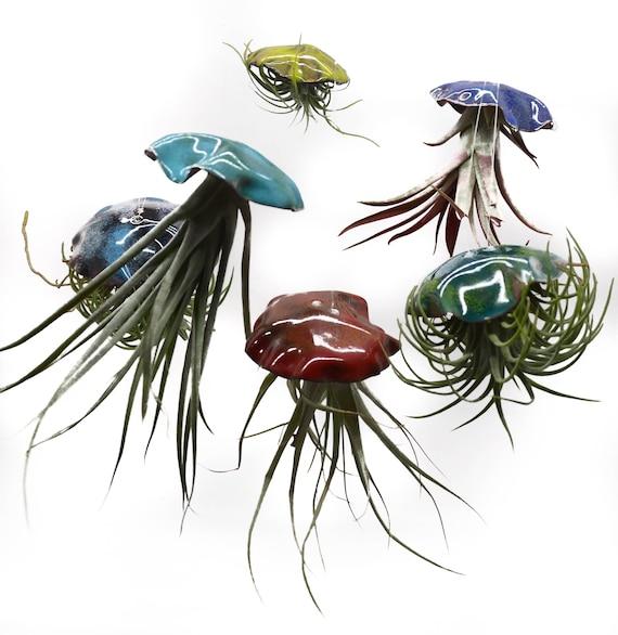 Kiln Fired Vitreous Enamel Airplant Jellyfish