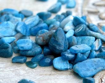 Apatite Tumbled Small Healing Stones - Small Gemstones - Polished Apatite - Tumbled Gemstones - Mini Gemstones - Blue Apatite - Reiki