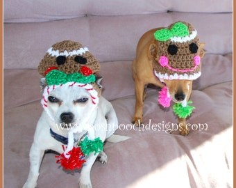 Instant Download Crochet Pattern Dog Sombrero And Poncho Set Etsy