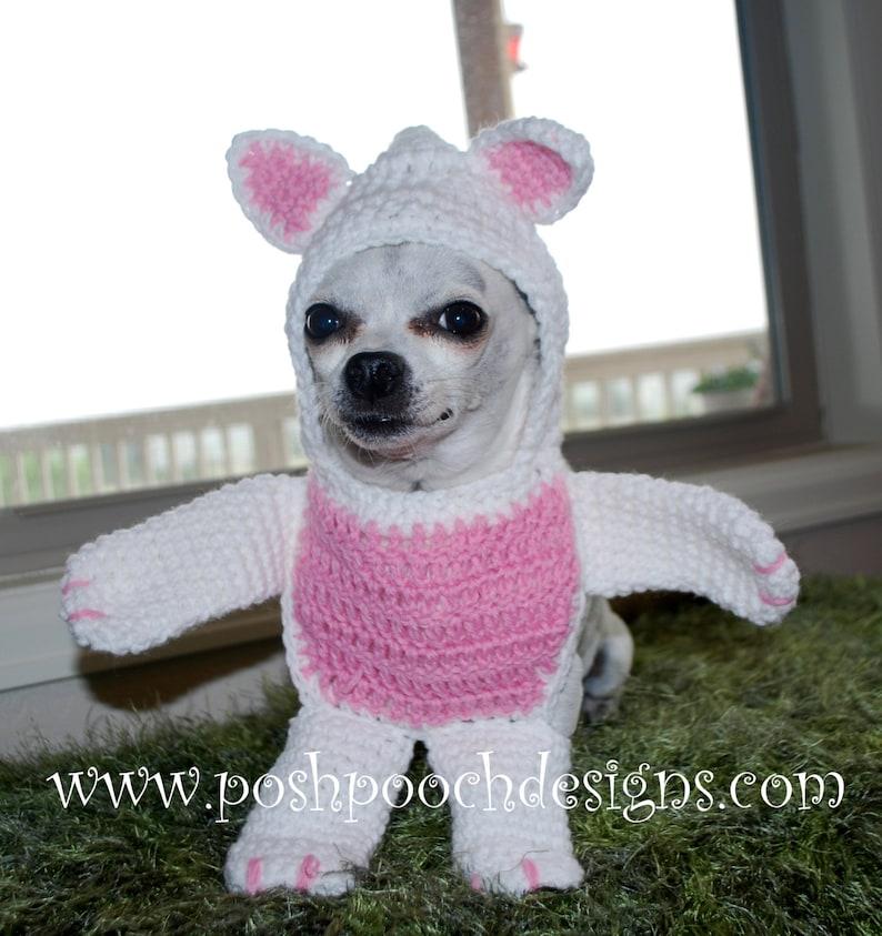 Instant Download Crochet Pattern Walking Bear Dog Costume XXS-M