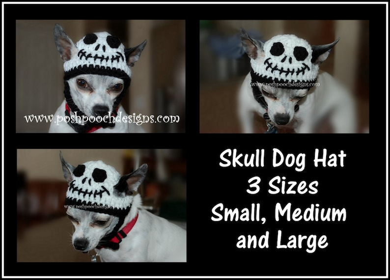 Skull Dog Hat Crochet Pattern for Small Medium and Large Dogs  87b8fe29287