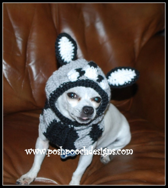 Raccoon Dog Snood Instant Download Crochet Pattern Small Dogs