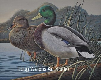 Mallard Duck Print, Waterfowl, Painting, Duck Print, Birds, Home Decor, Wall Decor, Gifts, Hunting, Office Decor, Cabin Decor