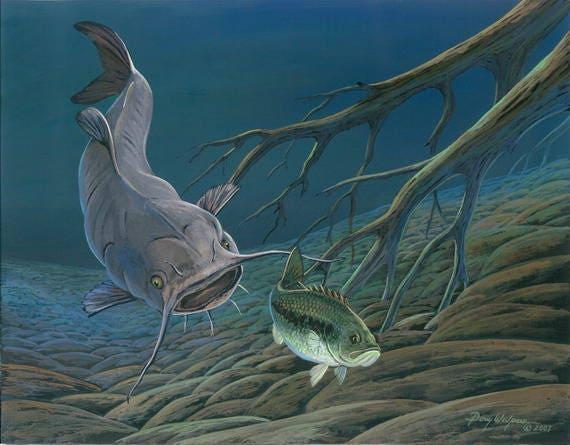 Largemouth Bass Fishing Print 11 x 14 by Doug Walpus Underwater scene Wall Decor