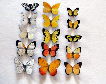 Butterfly Magnets Refrigerator Magnets Set of 15 Insects Kitchen Decor Bedroom Decor Gifts Butterflies