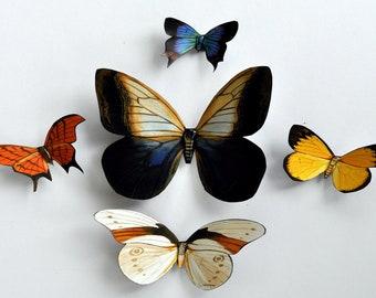 Butterfly Magnets, Set of 5, Refrigerator Magnets, Kitchen Decor, Handmade, Gift, Butterfly Decor, Butterflies