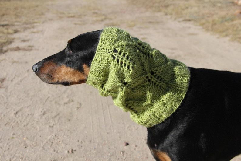 Lacey Leaf Dog Snood PATTERN for size medium to large dog ...
