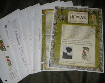 Celtic Tree Calendar Series: Rowan Month Jan 21-Feb.17