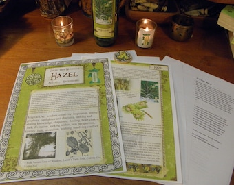 Celtic Tree Calendar Series: Hazel Month August 5-September 1