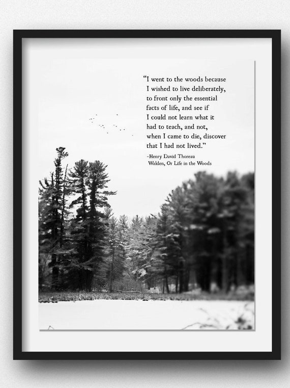 Citation De Henry David Thoreau Je Suis Alle A La Foret Etsy