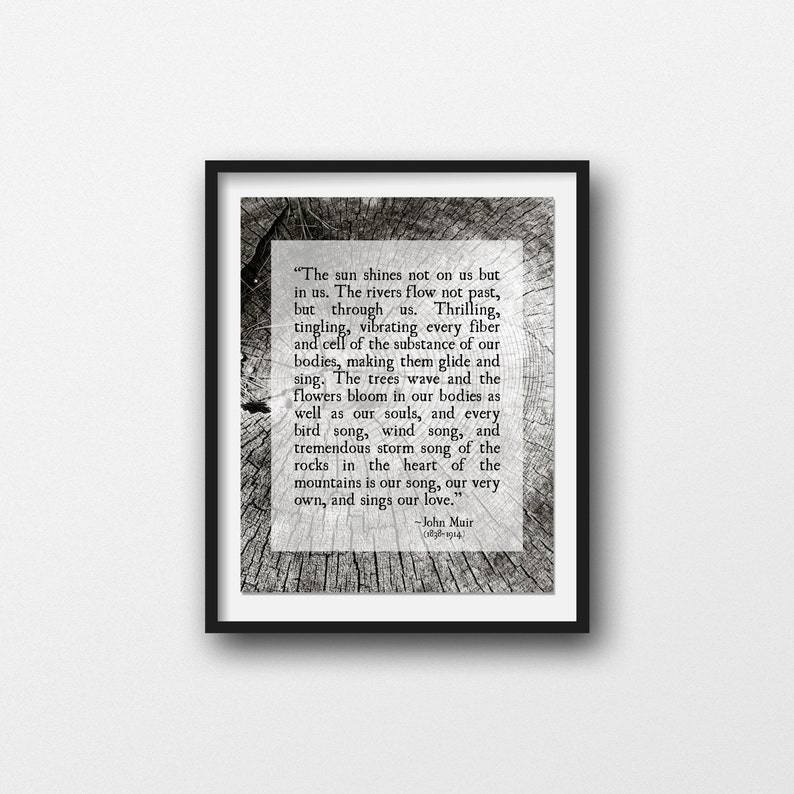 Woodlands Print Unframed Wilderness Quote Print Forest Tree Bark Photo Inspirational Quote Nature Quote John Muir Quote