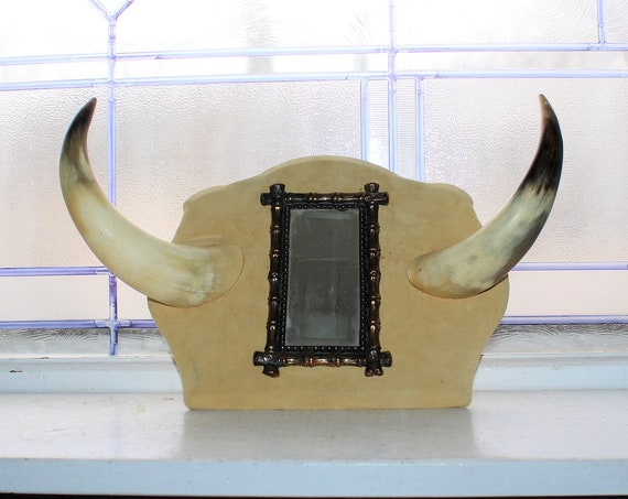 Vintage Steer Horn Hat Rack and Mirror Western Decor Cow Cattle