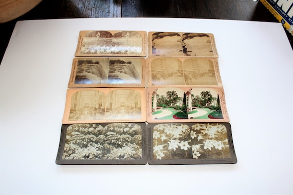 8 Antique Stereoviews US Scenes and Flowers