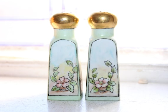 Antique Salt and Pepper Shakers Hand Painted A E G Bavaria Germany