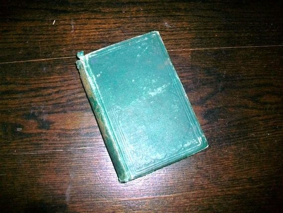 Antique 1875 Book Miss Thistledown by Sophie May