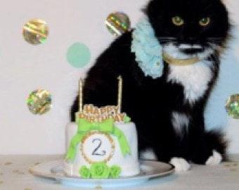 Custom Cake Design Your Own Cat Birthday