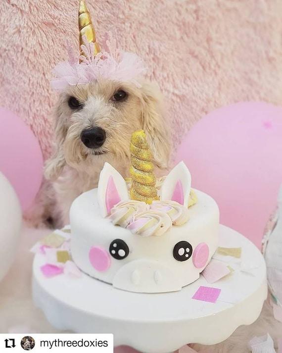 Stupendous Unicorn Cake Dog Birthday Cake Pet T Etsy Funny Birthday Cards Online Drosicarndamsfinfo