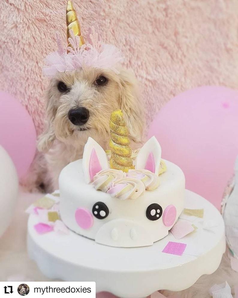 Unicorn cake Dog Birthday cake image 0