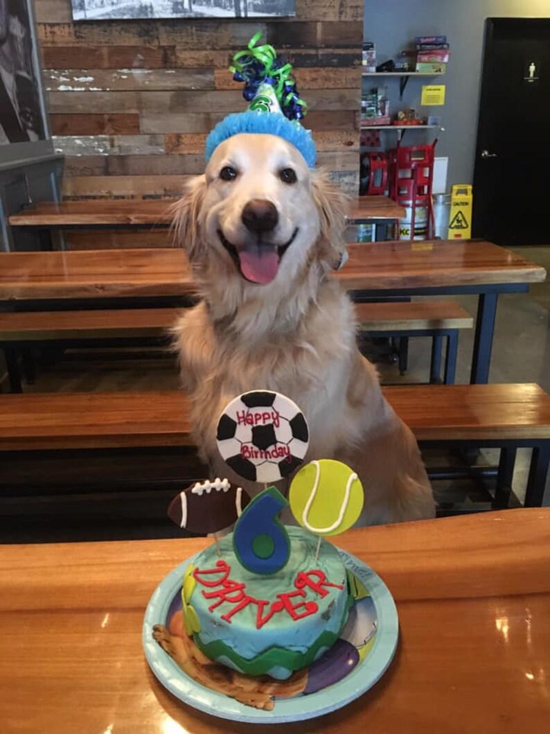 Wondrous Personalized Sports Themed Birthday 6 Inch Dog Birthday Cake Etsy Birthday Cards Printable Trancafe Filternl