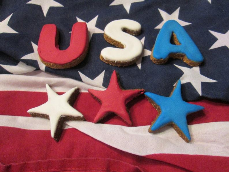 Summer Fourth of July Dog Treats God Bless America image 0