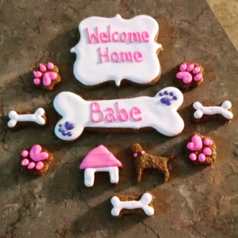 Personalized  Welcome Home New Puppy Dog Treats for little image 0