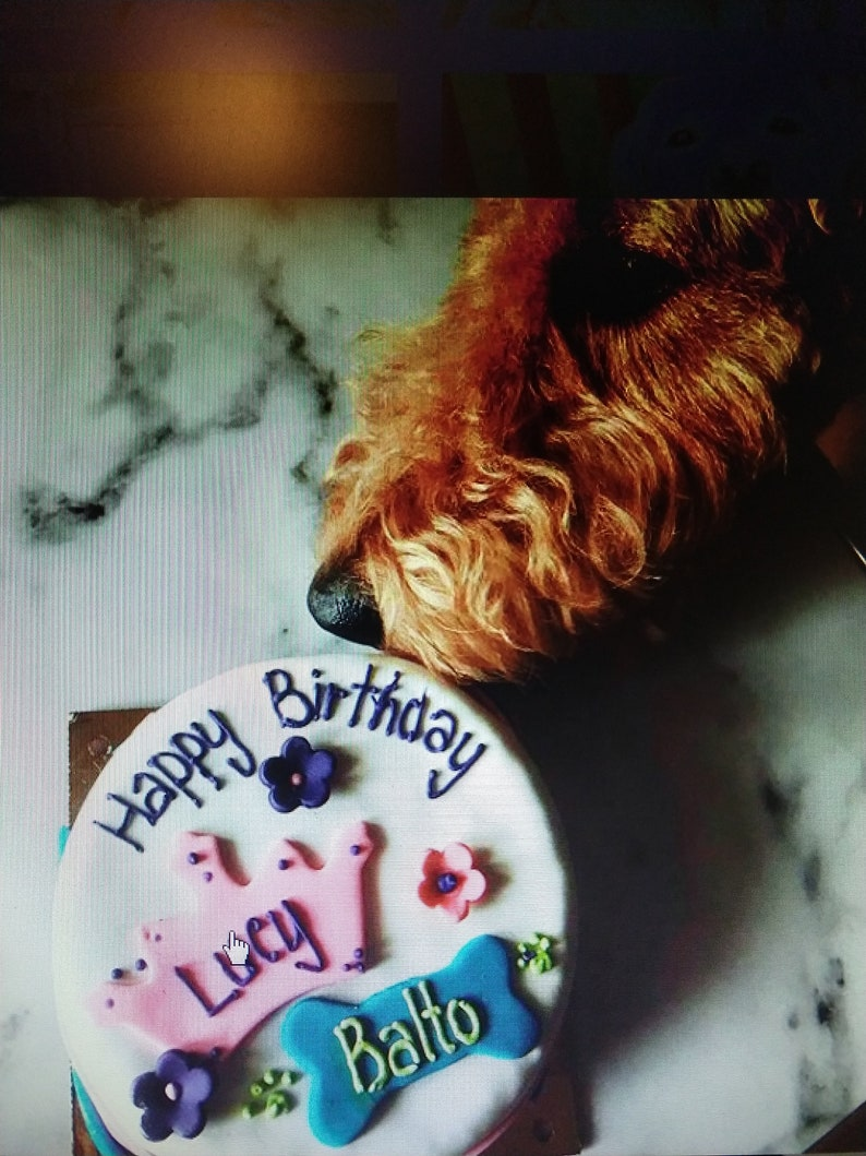 Personalized Sibling Best Freind 6 Inch Dog Birthday Cake