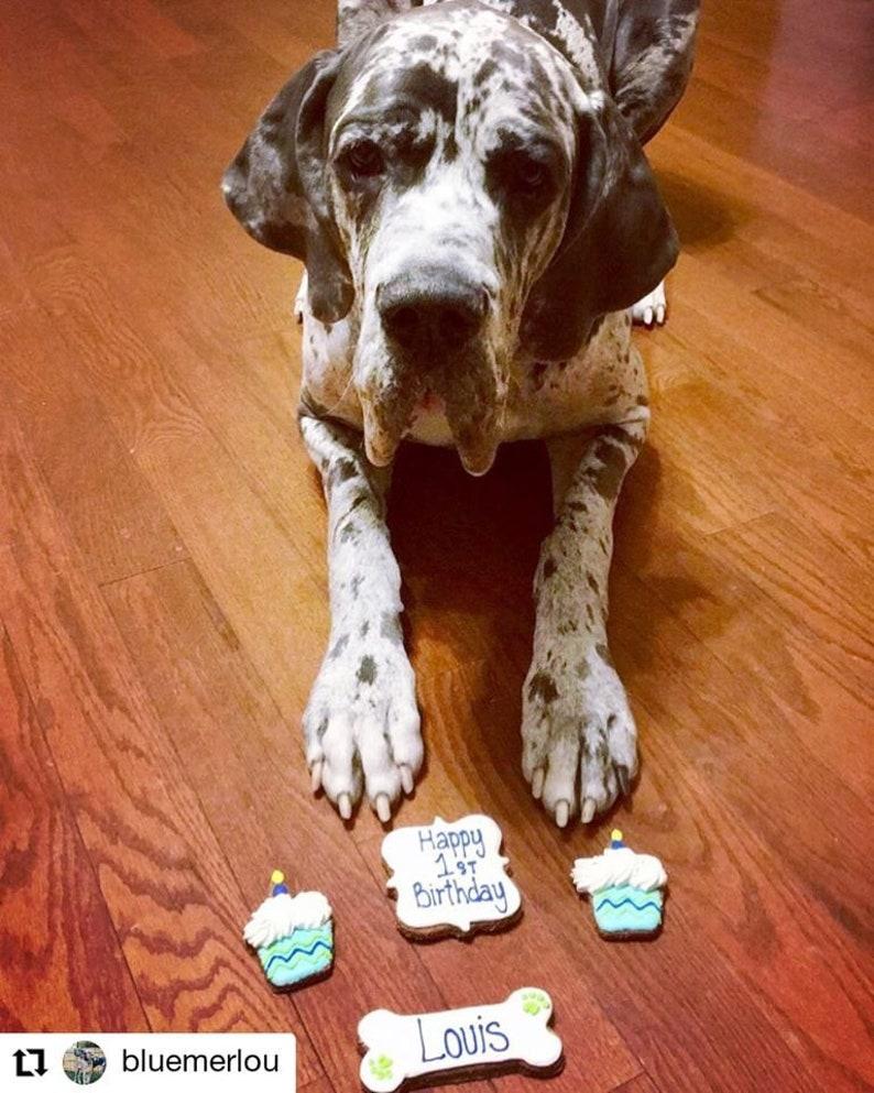 Personalized  Birthday Dog Treats cupcake dog treats image 0