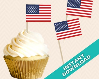 0873c564a30 American Flag Toothpick Party Decoration - Food Flag