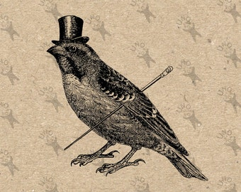 Vintage Collage Sparrow Top Hat Gentleman Bird Instant Download Digital Printable Clipart Graphic