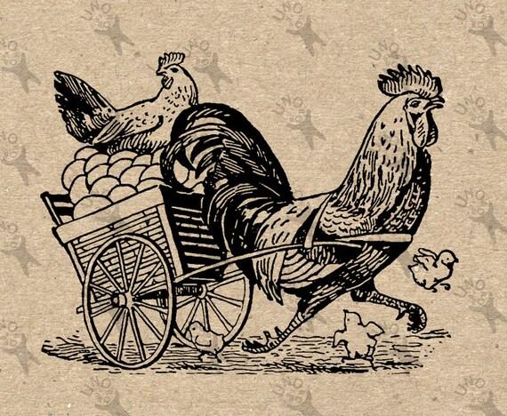 Old McDonald/'s Farm-Gallo-Hierro Camiseta Transferir